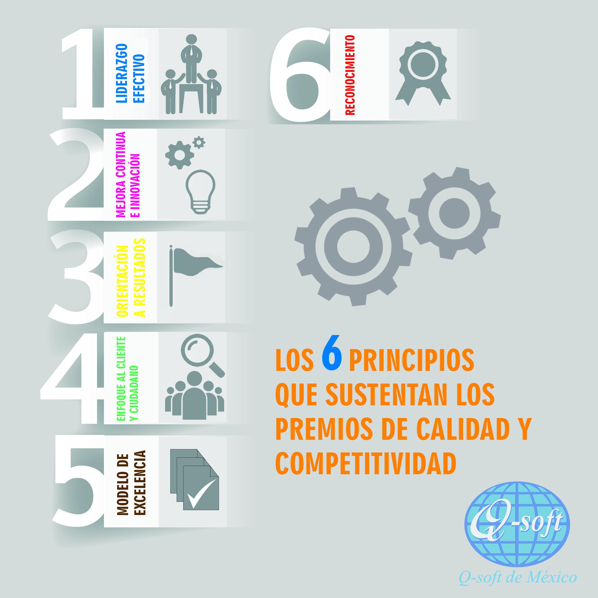 6 PRINCIPIOS MODELO CYC